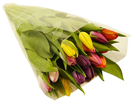 Benchmark Bouquets Multi-Colored Tulips, With Vase