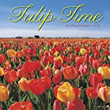 Tulip Time 2020 Wall Calendar by