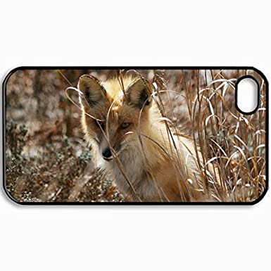 0a38487b163 Personalizada Protectora Carcasa Trasera para iPhone 4/4S, de tapa dura Fox  Hierba Sit Ocultar en negro diseño de color: Amazon.es: Electrónica