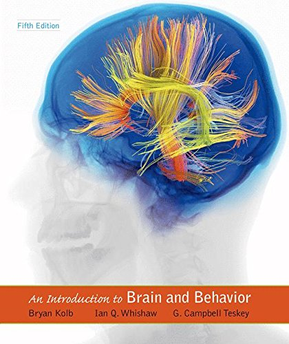 Pdf Medical Books An Introduction to Brain and Behavior