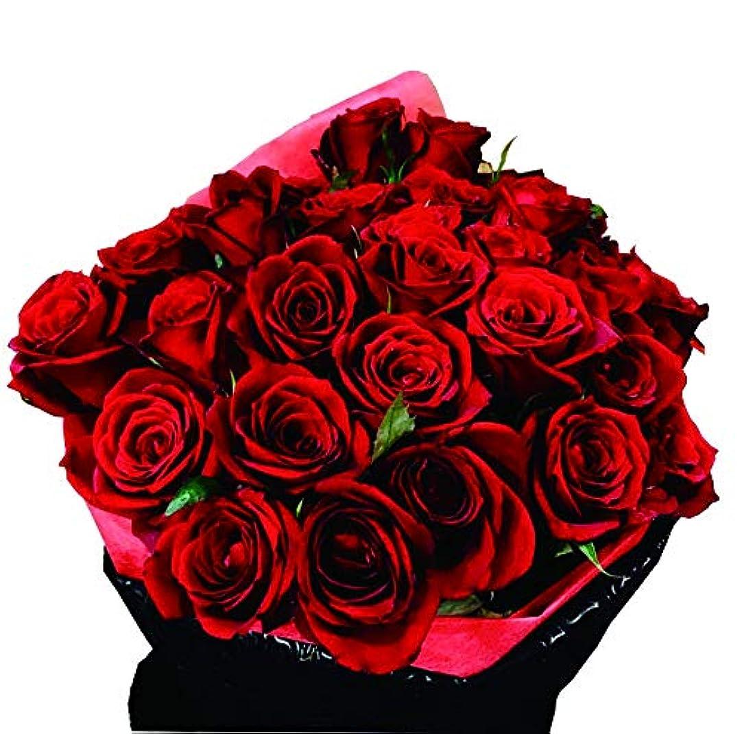 アイロニー息苦しい無知[エルフルール] 生花 カラーが選べる店長おまかせアレンジメント フラワーギフト 生花 誕生日祝い 結婚記念日 母の日 ギフト 母の日のプレゼント