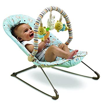 Fisher-Price Soothe n Play Bouncer Discontinued by Manufacturer