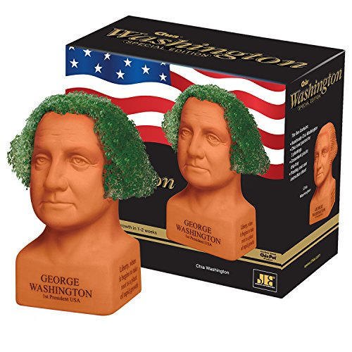 chia-george-washington-handmade-decorative-planter