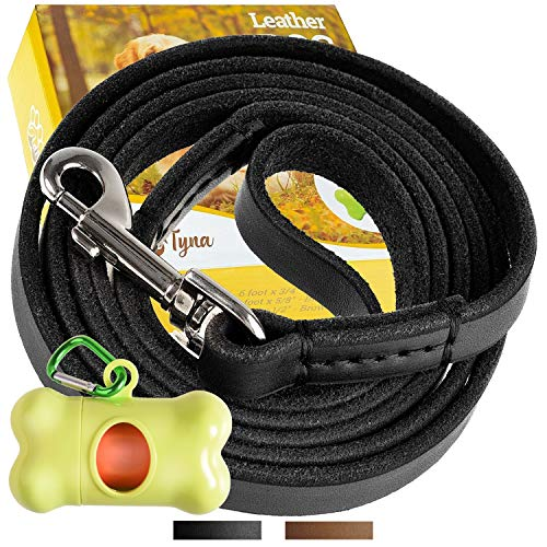 ADITYNA - Leather Dog Leash 6 Foot x 1/2 inch - Strong and Soft Leather Leash for Small or Medium Dogs - Heavy Duty Training Leash (Black)