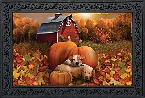 Briarwood Lane Welcome Fall Puppies Doormat Pumpkins Barn Indoor Outdoor 18 x 30