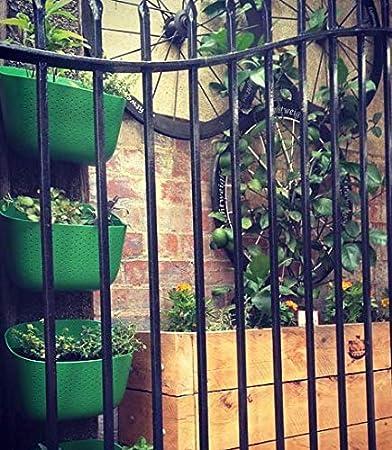 WallyGro Eco Vertical Garden Living Wall Planter Clover
