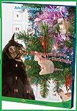 Katze Adventskalender