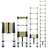 Stanz (TM) Portable 12.5 Feet Aluminum Telescoping Extension Ladder, 12 Steps