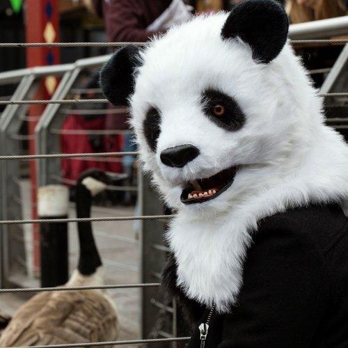 Thumbsup UK, Panda Mask Costume