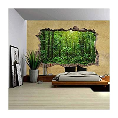 Amazing Design, it is good, Tropical Rain Forest Viewed Through a Broken Wall Large Wall Mural Removable Peel and Stick Wallpaper