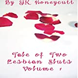 Bargain Audio Book - Tale of Two Lesbian Sluts  Volume 1