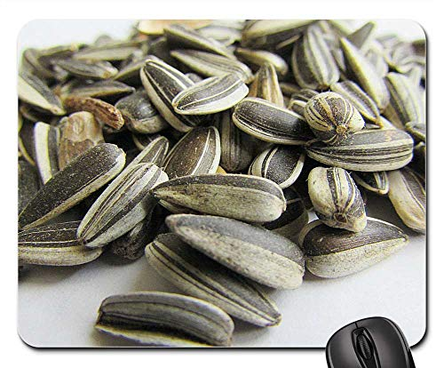 Mouse Pads - Sunflower Seeds Bird Seed Cores