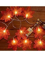 Partenopea Tool Lichtsnoer met esdoornbladeren, 2 meter, 10 LED's, Halloween, werkt op batterijen, herfstlicht