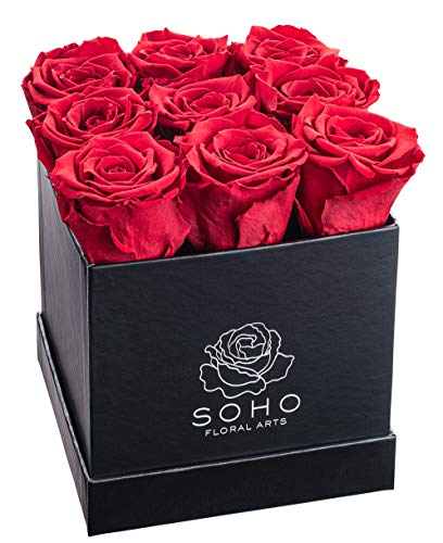 Soho Floral Arts | Real Roses That Last a Year and More | Fresh Flowers | Eternal Roses in a Box (9 Red Roses) | Mothers Day Gifts | Gifts for Mom