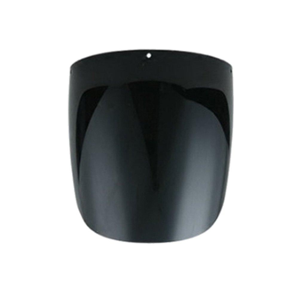 Bbianca Fenteer Casco Visiere Protezione Per Faccia Occhi Lento Saldatura Laboratorio Chimica Resistenza Temperatura