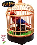frog popper toy - FUNTIVO Small Realistic Singing Bird on Cage with Flashing Lights, Battery Operated (Random Colors)