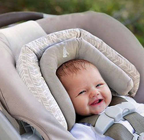 Eddie Bauer Duo Head Support Car Seat Carrier Swing