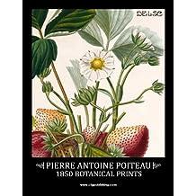 Pierre Antoine Poiteau: 1850 Botanical Prints