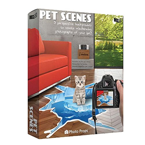 (Pet Scenes - Photo Backdrop for Pets)