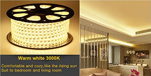 Quest High End 100 Feet Flat LED Strip Rope Light, Indoor/Outdoor Use 10100 Lumen, Dimmable, 120V, With Power Cord- 3000K by Quest
