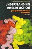 Understanding Insulin Action : Principles and Molecular Mechanisms, Splittstoesser, 0412022613