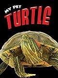 Turtle, Lynn Hamilton, 1605960888