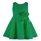Internet Cute Toddler Kids Girls Lace Hollow Floral Dress for 0-2 Years Old (6-9Months, Green)
