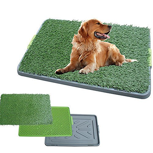 Indoor Outdoor Large 3 Layer Puppy Dog Toilet Training Mat Potty Zoom Park Turf Tray Loo Pad 17'X27' Dog Artificial Grass