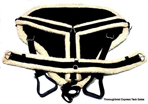 Harness Pad Horse - 3