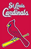 Party Animal MLB St. Louis Cardinals Applique Banner Flag