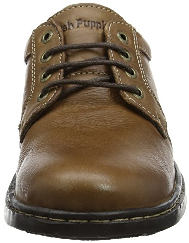 George Puppies Uomo Hanston Marrone Scarpe Brown Hush Stringate Derby Pf7qR55wv
