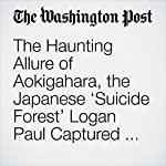 The Haunting Allure of Aokigahara, the Japanese 'Suicide Forest' Logan Paul Captured on Film | Lindsey Bever
