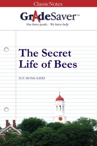 literary devices in the secret life of bees