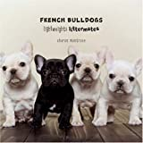 French Bulldogs: Lightweights Littermates