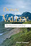 img - for Down in the Valley: Our Acquaintance with Grief book / textbook / text book