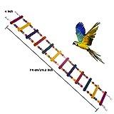 SZBOYU Bird Toys for Parrot Ladder,Swing,Trainning Rainbow Bridge for Parrots African Grey Parakeets Conures Cockatiels Cokatoo Lovebirds