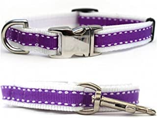 "product image for Diva-Dog 'Preppy Purple' Custom 5/8"" Wide Dog Collar with Plain or Engraved Buckle, Matching Leash Available - Teacup, XS/S"