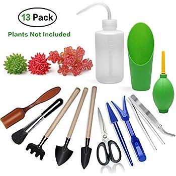 Amazon.com: Ginsco Succulent juego de herramientas manuales ...