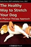 The Healthy Way to Stretch Your Dog - A Physical Therapy Approach