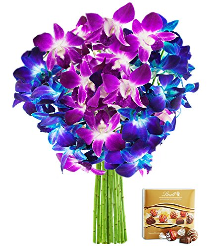 Madame Butterfly with Blue and Fuchsia Dendrobium Orchids (10 Stems) - With Vase