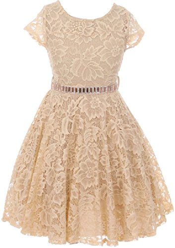 Big Girl Cap Sleeve Lace Skater Stone Belt Flower Girls Dresses (19JK88S) Champagne 14