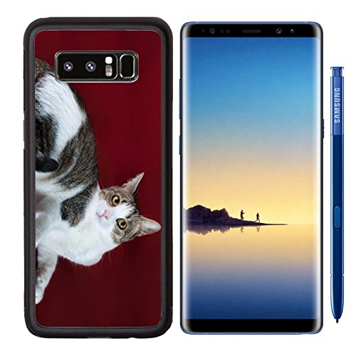 MSD Premium Samsung Galaxy Note8 Aluminum Backplate Bumper Snap Case Tricolor cat with yellow eyes lying on burgundy background Image 33192140 Customized Tablemats Stain Resistance Collector Kit - Cat Dramatic Eye