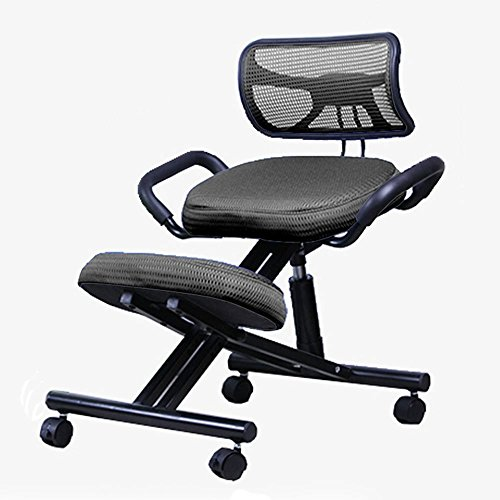 DIDIDD Brisk-- home backrest computer chair steel adjustable writing chair meets the ergonomics straightening chair student chair / 5 colors available,2 by DIDIDD