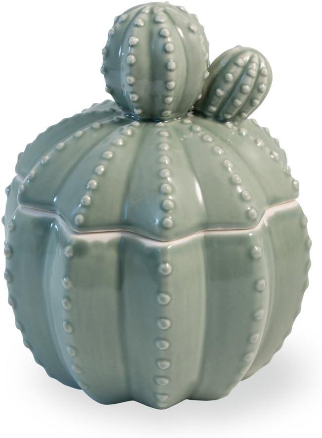 Ceramica de cactushttps://amzn.to/37KNSed