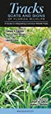 Tracks, Scats and Signs of Florida Wildlife, Quick Reference Publishing, 193691302X