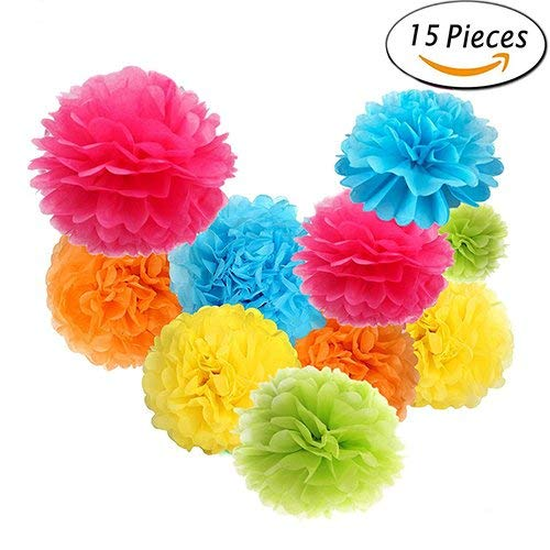15 Pcs Tissue Paper Pom Poms Flower Balls, EREACH 5 Mixed Rainbow Colors Handmade Paper Flowers for Wedding, Birthday, Party, Baby Shower and Outdoor Decoration (color1)