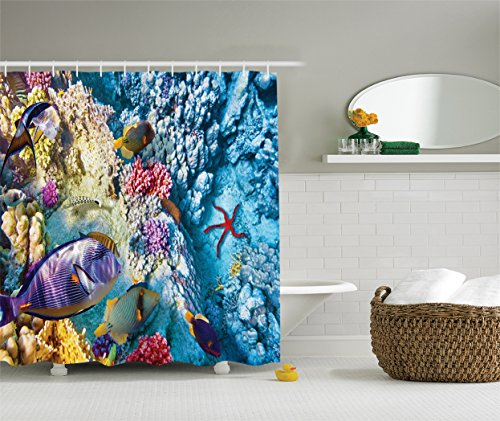 Ambesonne Ocean Decor Collection, Tropical and Exotic Coral Reefs Fish and Starfish in a Shallow Lagoon Underwater Egyptian Sea Picture, Polyester Fabric Shower Curtain, 75