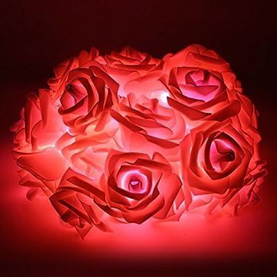 Leezo 20-LED Rose Flower Fairy Wedding Garden Party Christmas Decor Xmas String Lights