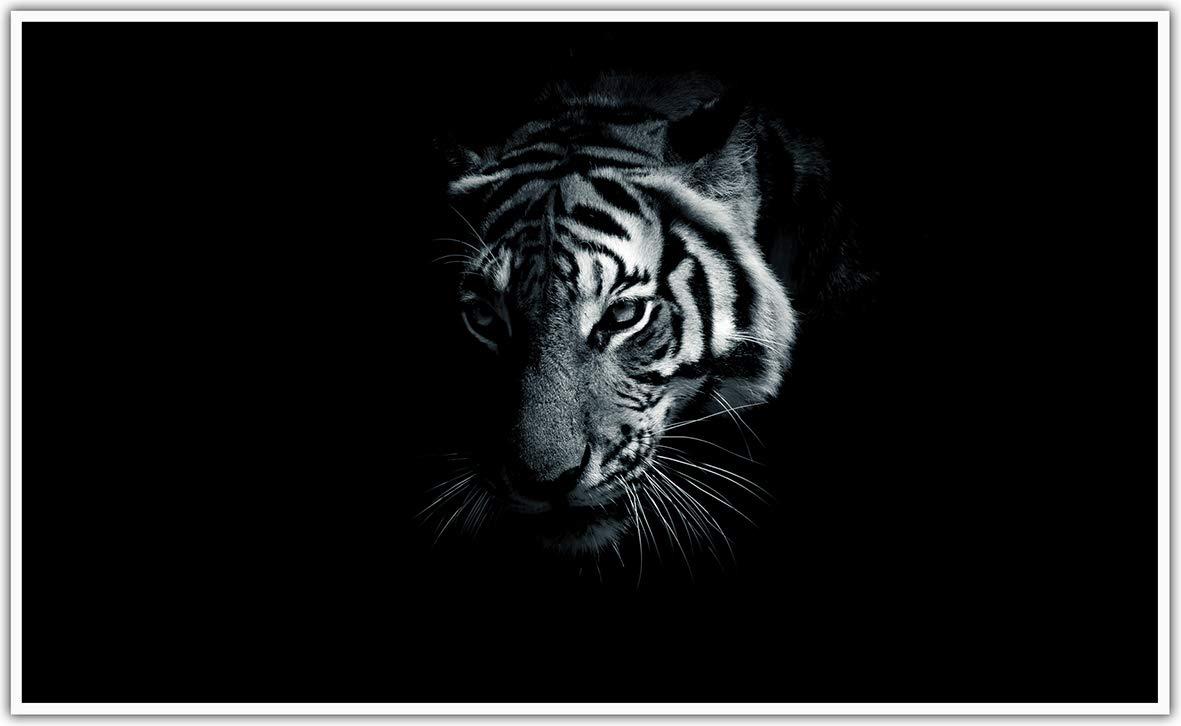Black Edition Bildheizung in HD Qualit/ät mit T/ÜV//GS 200+ Bilder -1000Watt Patentiert -Wei/ßer/_Rahmen K/önighaus Fern Infrarotheizung 242. Totenkopf Hell-Rider