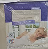 Protect-A-Bed Luxury Waterproof Pillow Protector, Standard